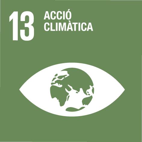 13 accio climatica ODS cilma