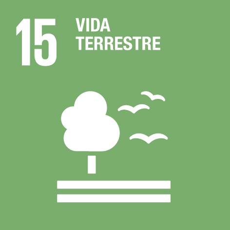 15 vida terrestre ODS