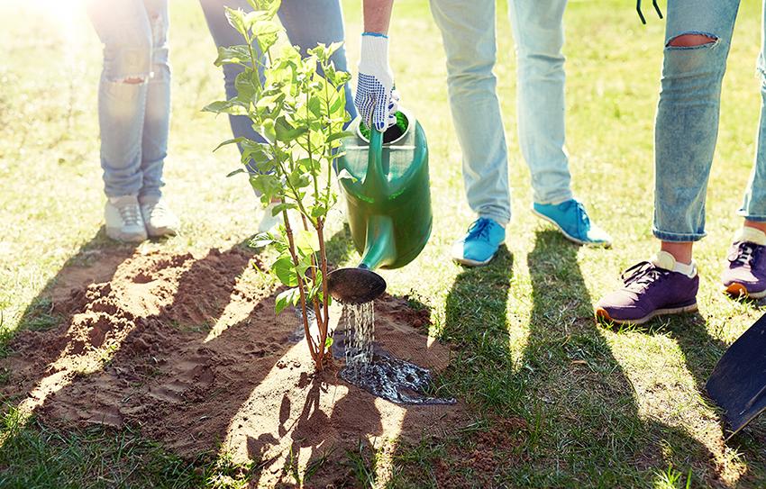 educació ambiental cilma medi ambient natura